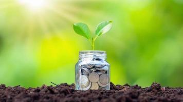 petites plantes qui cultivent de l'argent en bouteille, des pièces de monnaie sur le sol, des idées de croissance pour les entreprises et les investissements