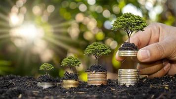 Des mains humaines tenant de l'argent et des arbres qui poussent sur le concept de croissance financière d'investissement en argent