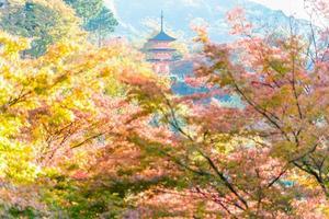 Temple Kiyomizu Dera à Kyoto, Japon photo