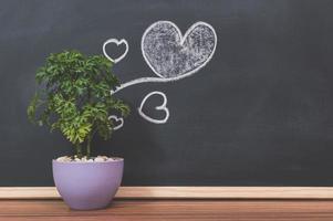 pot de fleurs et coeur doodle sur le tableau noir