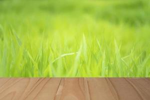 Table en bois avec fond d'herbe floue pour l'affichage photo