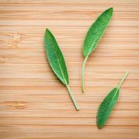 feuilles de sauge fraîche sur fond de bois photo
