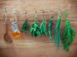 Diverses herbes accrochées sur fond de bois minable photo