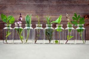 herbes en bouteilles en verre photo