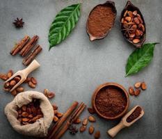 poudre de cacao et fèves de cacao sur fond de béton photo