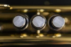 gros plan sur les soupapes de trompette photo