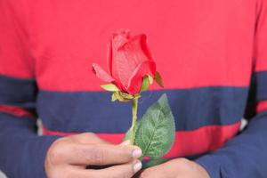 Main de l'homme non reconnu tenant une fleur rose