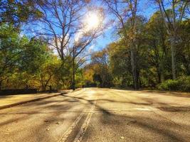Central Park à l'automne par une journée ensoleillée photo