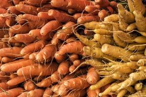 carottes jaunes et orange