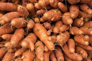 tas de carottes