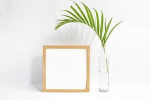 cadre vierge avec plante sur fond blanc photo