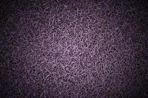 lambeaux de papier violet avec vignette photo