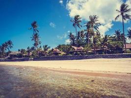 belle plage tropicale avec palmiers
