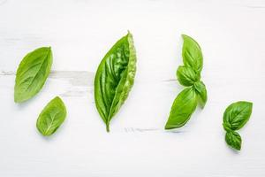 feuilles de basilic sur fond blanc minable photo