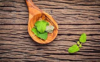 feuilles de mélisse fraîche dans une cuillère photo