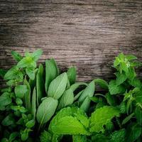 herbes sur bois photo