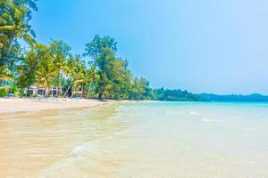 plage tropicale avec palmiers