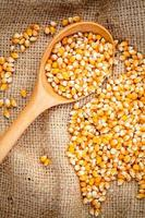 maïs avec une cuillère photo