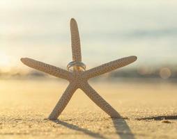 anneaux de mariage sur une étoile de mer photo