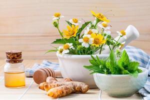 herbes fraîches pour huiles essentielles photo