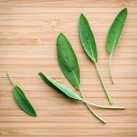 feuilles de sauge fraîche sur bois photo