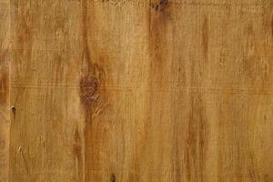 détail de la texture en bois photo