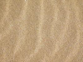 Patch de sol sec et craquelé pour le fond ou la texture photo