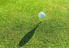 balle de golf sur un tee photo