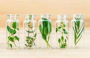 bouteilles d'herbes sur une table photo