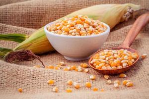 maïs séché dans un bol et une cuillère photo