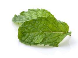 gros plan, de, menthe, feuilles, blanc