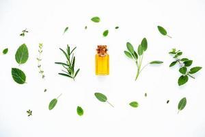 huile essentielle fraîche photo