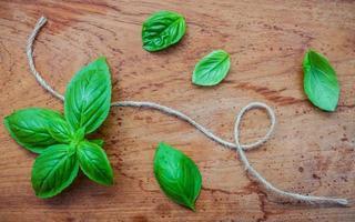 feuilles de basilic et ficelle photo