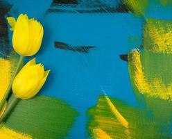 Feuilles d'eucalyptus avec de belles tulipes jaunes photo