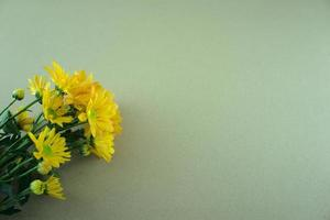 fleurs mamans à plat sur fond blanc gris