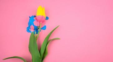 Acrylique coloré et fleur jaune, tulipe à plat sur fond rose clair photo
