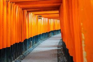 Portes torii au sanctuaire Fushimi Inari à Kyoto, Japon photo