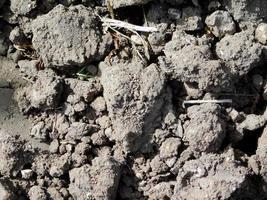 patch de sol sec pour le fond ou la texture photo