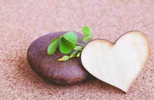 coeur en bois et une pierre photo