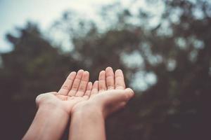 mains placées ensemble comme prier devant la nature fond vert photo