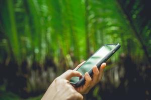 main de femme à l'aide d'un smartphone photo