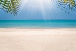 plage tropicale et fond de ciel bleu