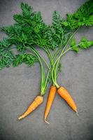 carottes sur fond gris