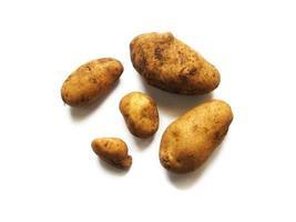 pommes de terre sur fond blanc