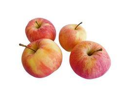 quatre pommes sur fond blanc