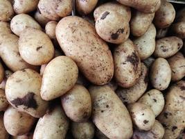 tas de pommes de terre