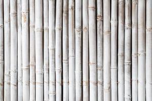 motif de clôture en bambou blanc photo