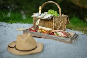 Panier de pique-nique en osier avec des fruits et une bouteille de vin sur l'herbe verte pendant la journée