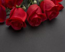 gros plan, rouges, roses photo