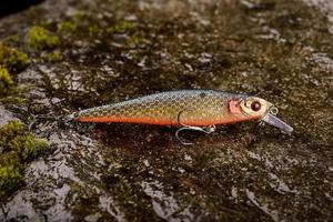 Leurre de pêche wobbler sur une pierre humide avec de la mousse photo